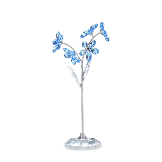 Flower Dream - Forget-me-not