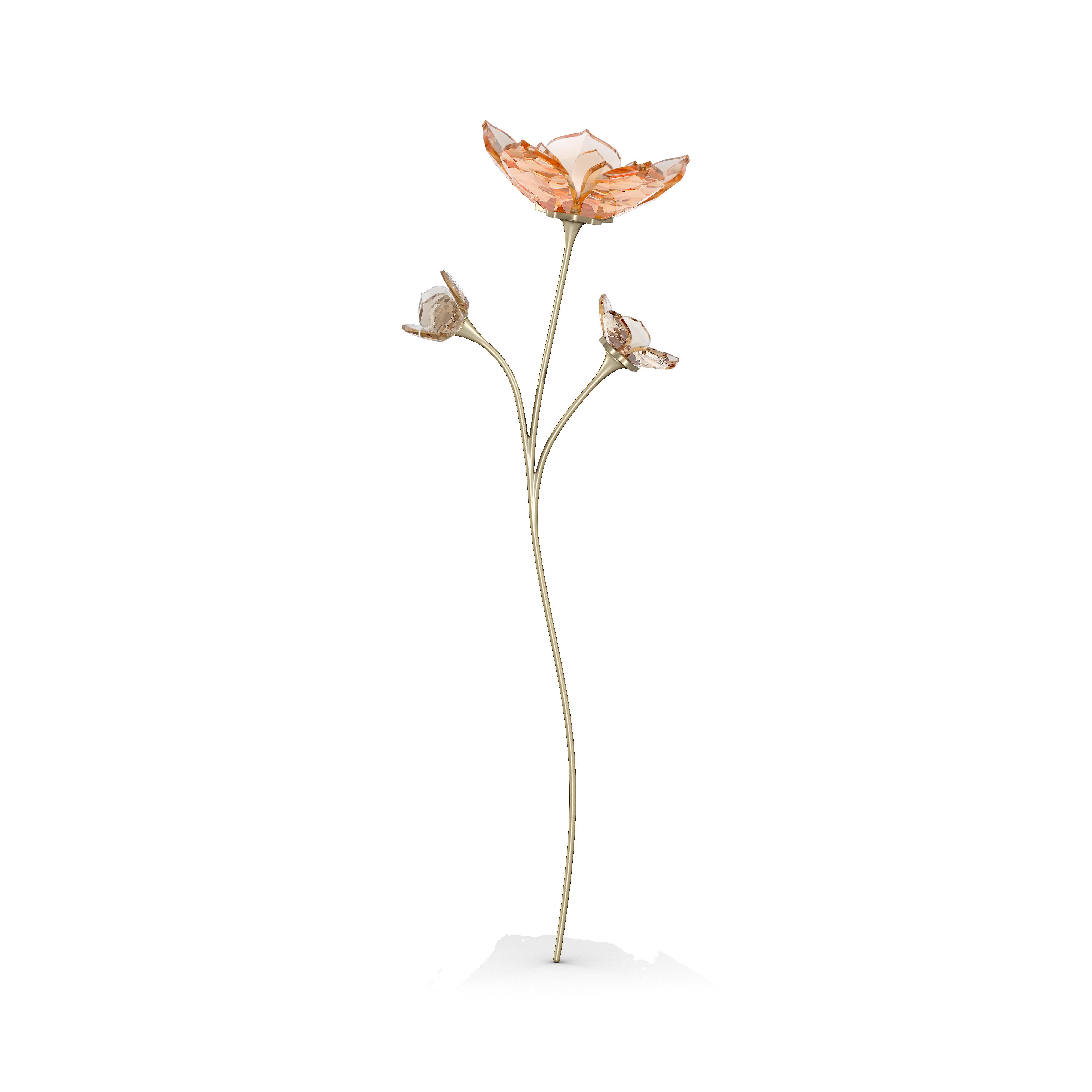 Garden Tales Magnolia